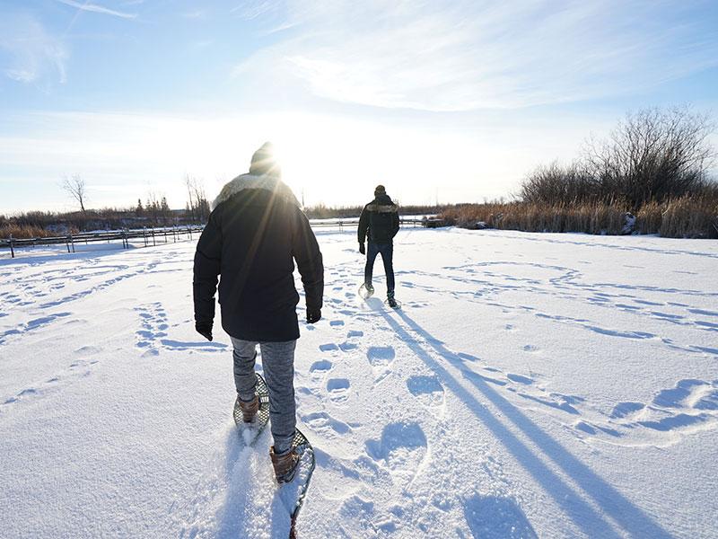 Top 10 - Winter