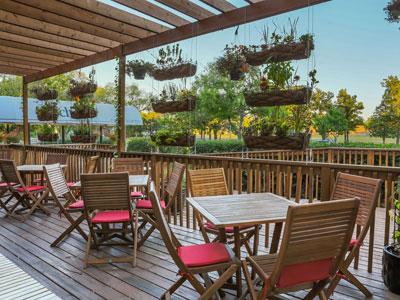Chaise Café & Lounge