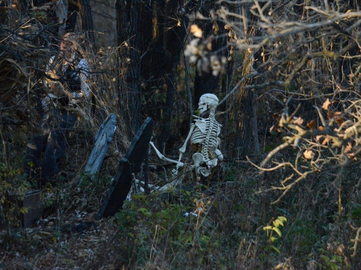 Winnipeg's five favourite haunts for heart-pounding horror - Enter The Haunted Forest at Amaze in Corn at your own risk. (photo: Amaze in Corn)