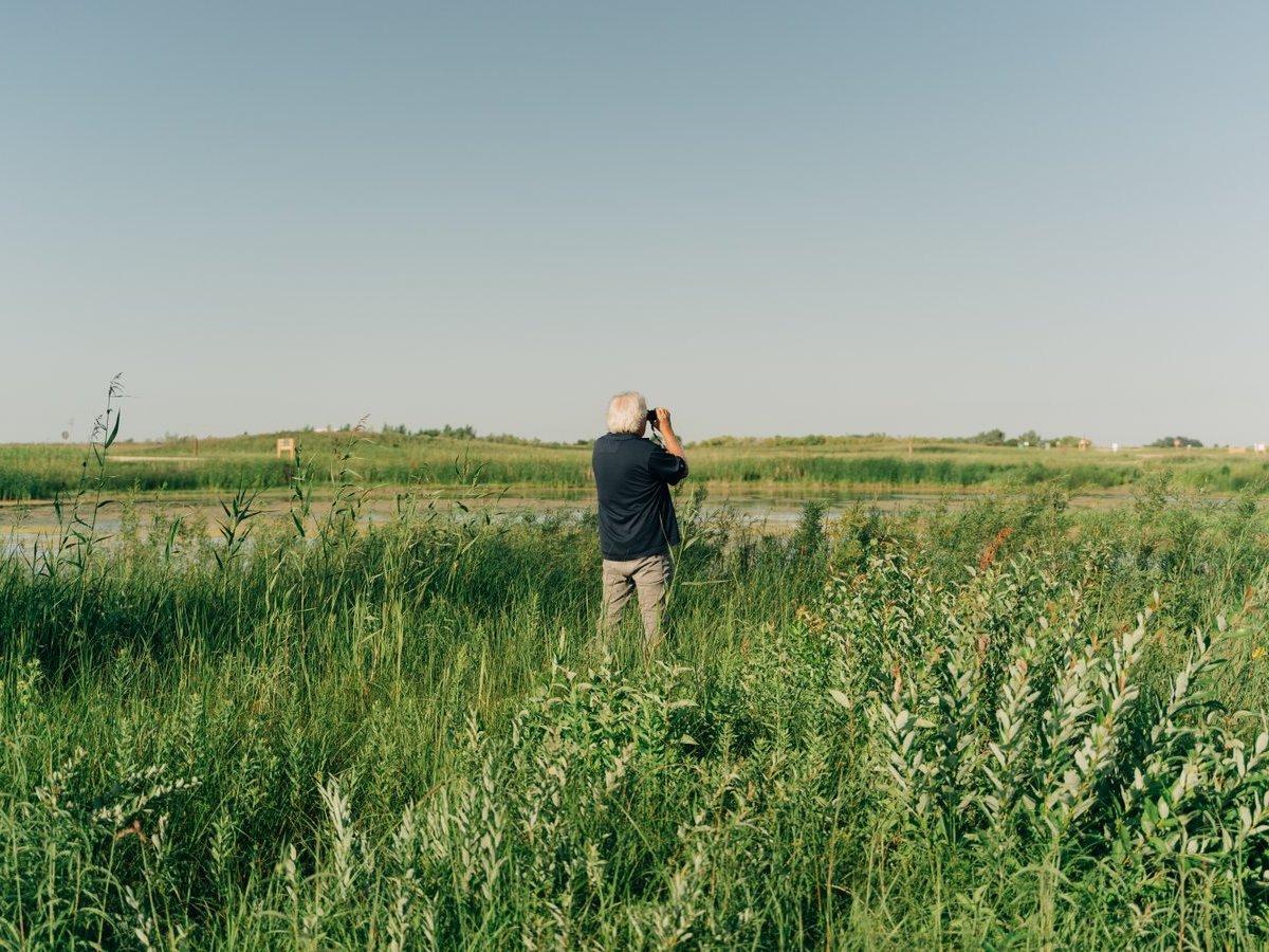 Flock to these Winnipeg spots for the best in birding  - Bird watching at Oak Hammock Marsh (photo: April Carandang)