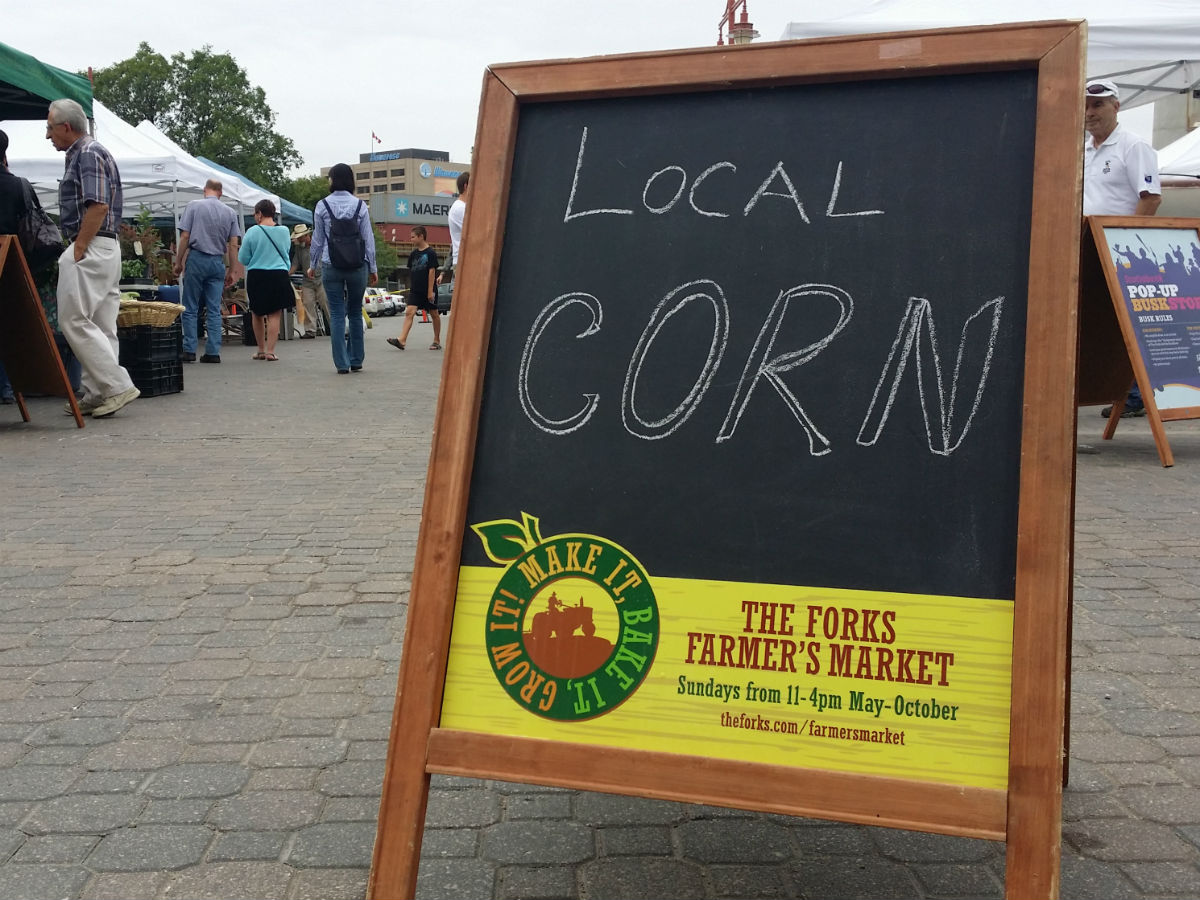 Winnipeg Farmers' Markets Guide 2013 - This is the type of corn you'll feel good about having stuck in your teeth