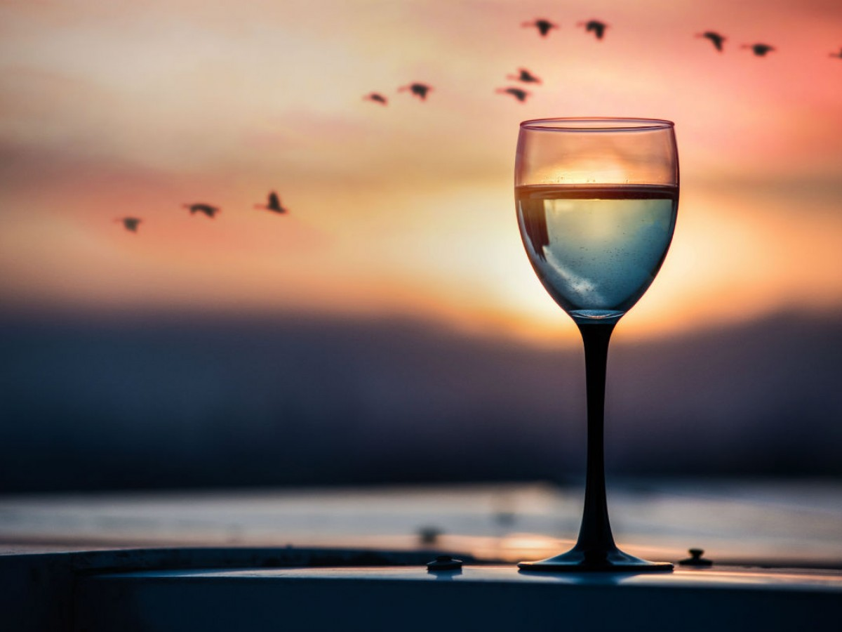 Foodies will fall for these autumn culinary events in Winnipeg  - A glass of wine accompanied by geese during FortWhyte Alive's Goose Flight Feasts (FortWhyte Alive)
