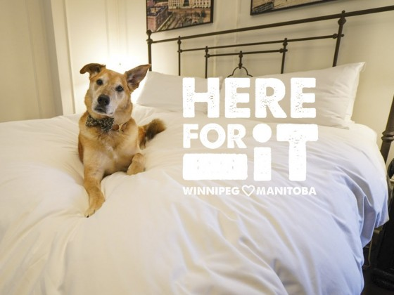 Fort Garry Hotel and Ten Spa is here for you and your dog, too