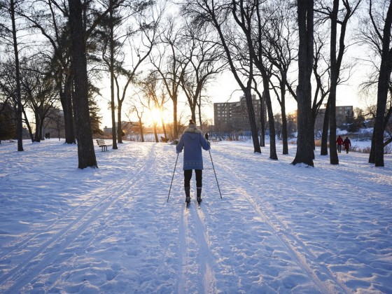 Get your glide on: Cross-country skiing in Winnipeg - St. Vital Park has ski trails surrounding the entirety of the park (photo: Maddy Reico)