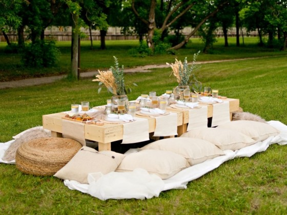 CURRENT Picnic makes for the easiest, chicest picnic in the 'Peg - CURRENT Picnic brings luxury picnics to Winnipeg. (Photo by Red Photo Co.)