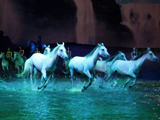 Cavalia's Odysseo is one of the best shows to ever ride into Winnipeg