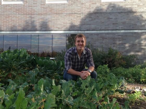 CitiGrow brings farm to table a small plot closer