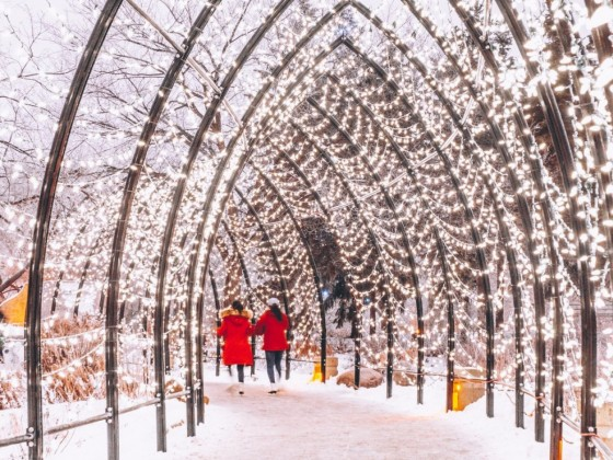 Let's get lit: make your Winnipeg winter shine with these events - Skate under bright shiny arches at The Forks this holiday season (photo by Kristhine Guerrero)