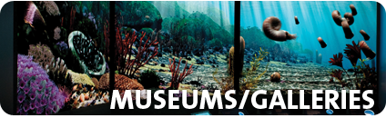 Museums/Galleries