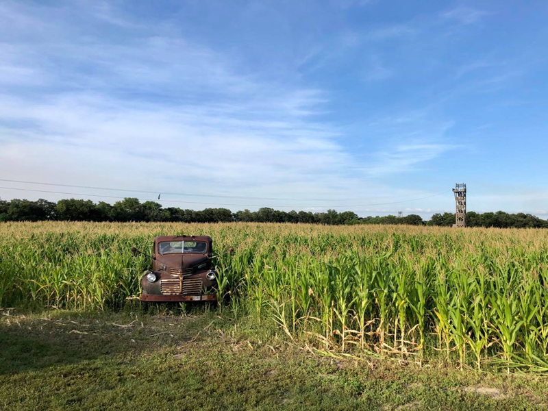 Image from A Maze in Corn Manitoba Facebook page