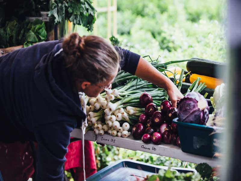 © Downtown Farmers' Market