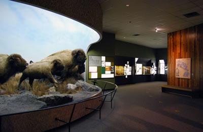 The Manitoba Museum