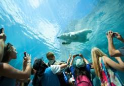 Assiniboine Park and Zoo