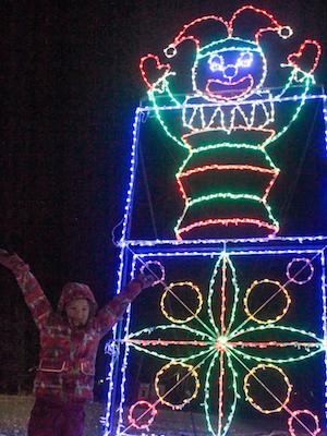 Light Up the Night at Canad Inns Winter Wonderland - representative image