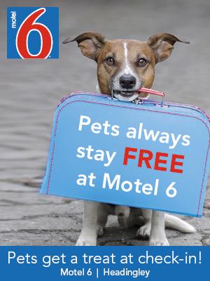 Motel 6 in Headingley / Winnipeg West - representative image