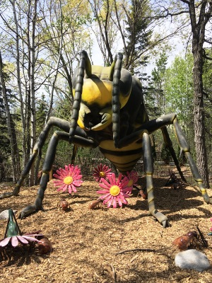 Catch Xtreme BUGS this summer at Assiniboine Park Zoo!  - representative image