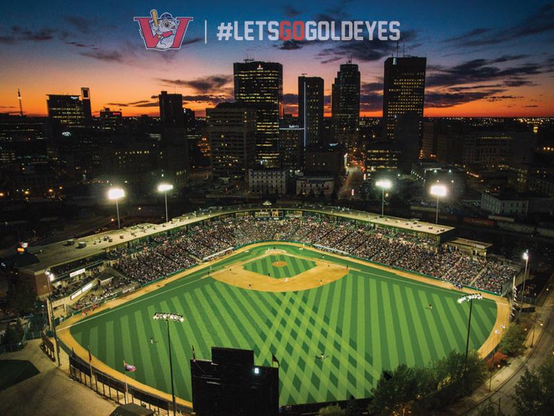 Let's Go, Goldeyes! Let's Go! - representative image