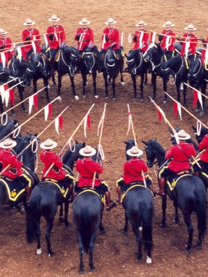 RCMP Musical Ride - representative image